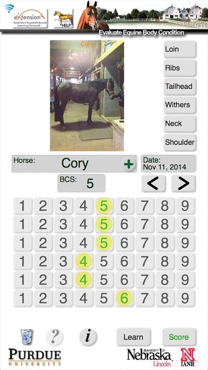 HorseBCS screenshot-3