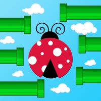 Codes for Flap Flap LadyBird Hack
