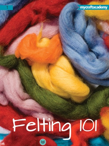 Fun Felting for Beginners-ipad-1