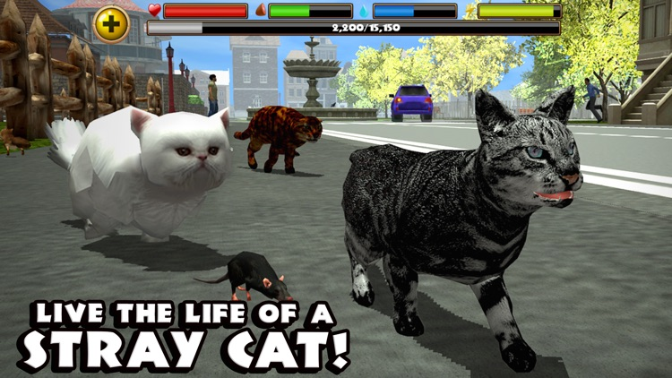 Stray Cat Simulator screenshot-0