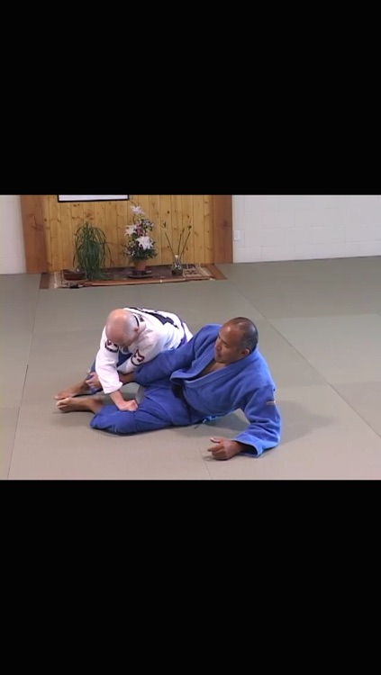 Brazilian Jiu Jitsu Seminars: Year One screenshot-3