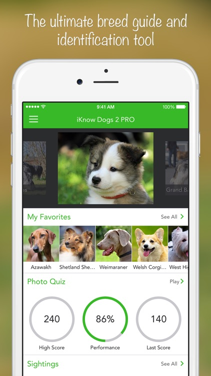 iKnow Dogs 2 PRO - NATURE MOBILE - Dog Breed Guide and Quiz Game screenshot-0