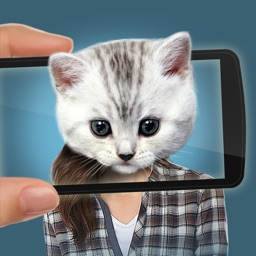 Face scanner prank: What cat?