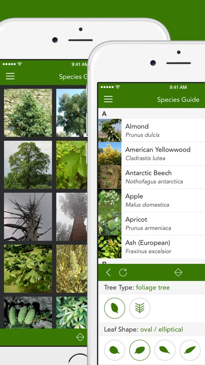 Trees 2 PRO - The Field Guide by NATURE MOBILE