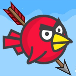 I Hate Birds