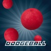 Dodgeball Multiplayer