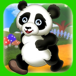 Panda & Friends Run