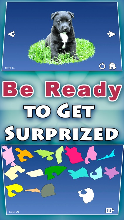 Shape Puzzles Pro - Assemble Brainteaser screenshot-2