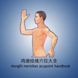 Meridian Acupoint Handbook