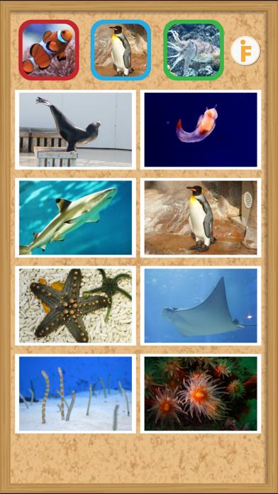 とびだす水族館のおすすめ画像3