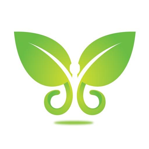 Bloom Wellness Lounge