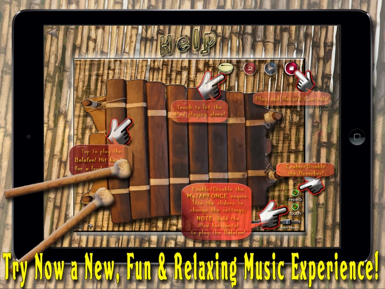 African Balafon Fun! - HD PRO screenshot-4