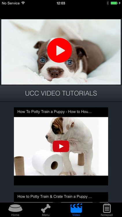 How To Potty Training A Puppy - Complete Guide screenshot-3