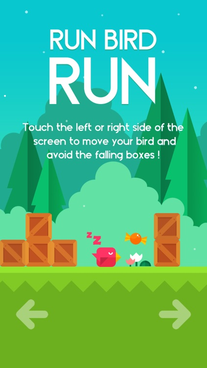 Run Bird Run screenshot-1