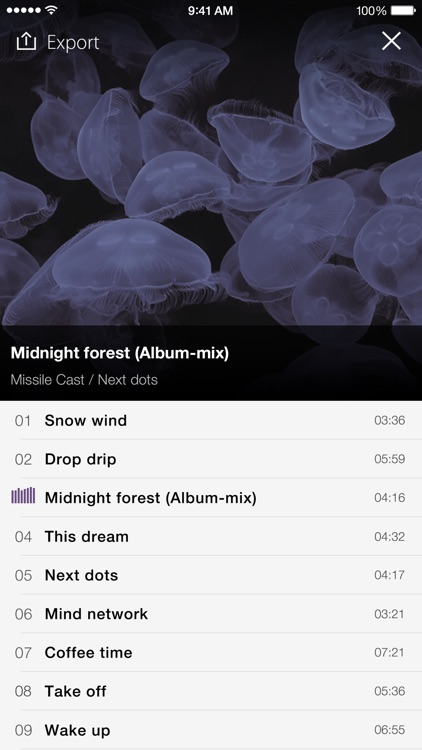 PSOFT Audio Player screenshot-4
