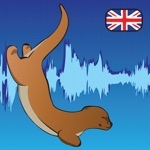 English Pronunciation - Otterwave