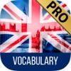 点击获取LEARN ENGLISH Vocabulary - Practice review and test yourself with games and vocabulary lists Premium