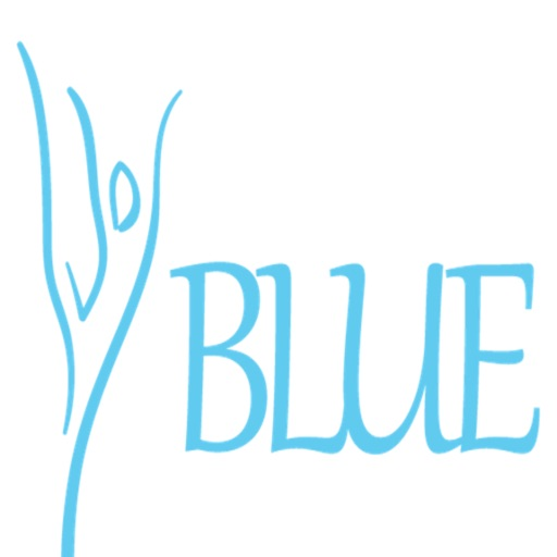 BLUE BARRE AND DANCE FITNESS
