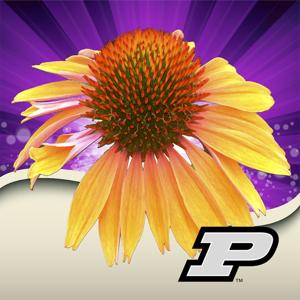 Purdue Perennial Doctor app