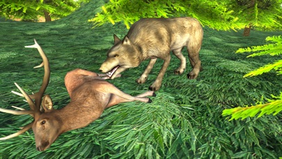 Wild Wolf Attack Adventure 3D - Wild  Beast wolf Revenge From Animals screenshot two