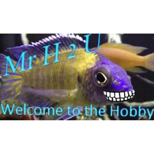 MrHoney2U