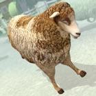 ベスト 小さな羊 ファーム | 無料 バーチャルペット  シミュレータ ゲーム icon