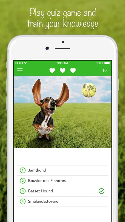 iKnow Dogs 2 LITE - NATURE MOBILE - Dog Breed Guide and Quiz Game screenshot-3