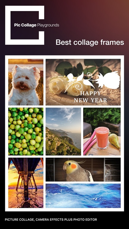 Pic Collage Playgrounds Pro - photo editor and pic collage Maker screenshot-3
