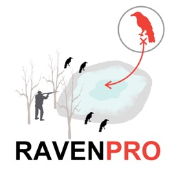 Raven Hunting Strategy Hunting Simulator for Bird Hunting - Ad Free