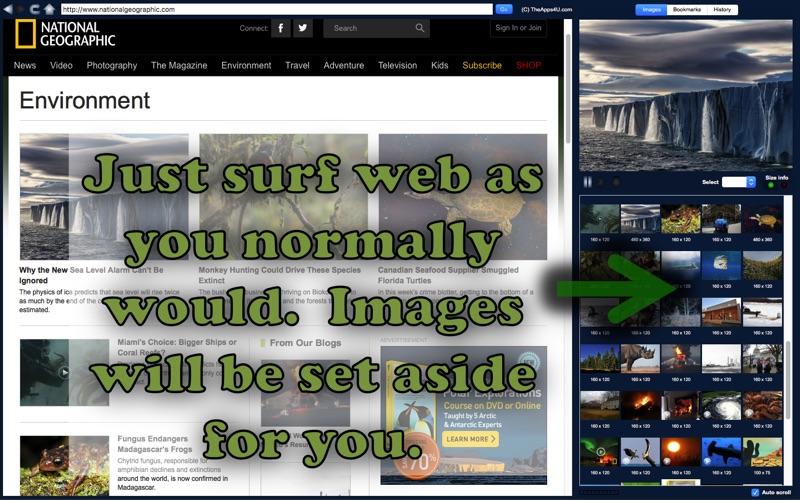 Web Image Grab EZ Screenshot