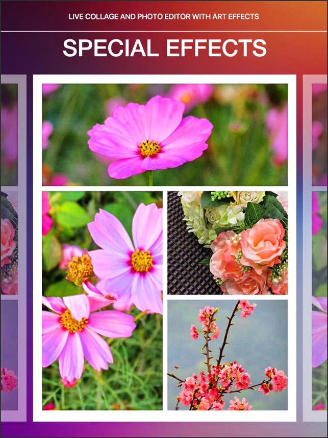 license code picture collage maker pro 4.1 4.0.5 serial