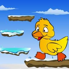 Activities of Duck Jumper