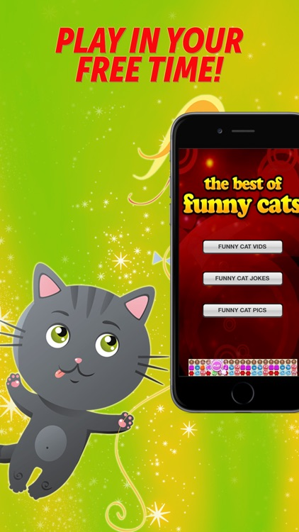 Funny Cats - Best Funny LOLcat Vids, Pics, and Jokes
