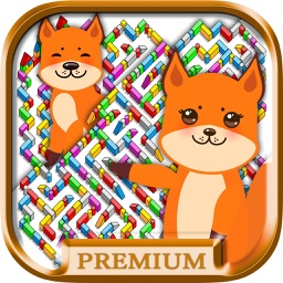 Mazes - logic games for children Premium