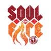 Rock the Desert 2016 - Soul on Fire
