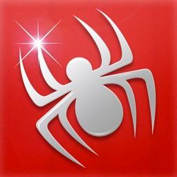 Spider Solitaire ⋄