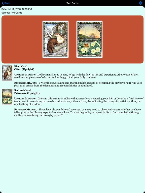 Druid Oracle Cards-ipad-3