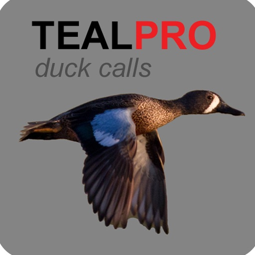 Duck Calls for Teal - TealPro Duck Hunting Calls