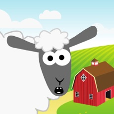 Activities of Shear The Sheep