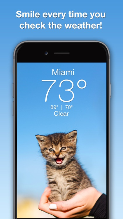Weather Kitty screenshot-0