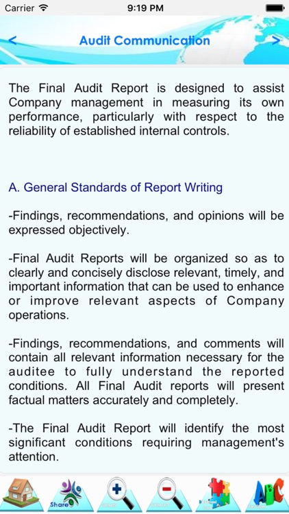 Internal Audit Manual & Process screenshot-3