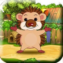 Bouncing Hedgehog! - For Kids! Help The Launch Tiny Baby Hedgehog To Catch His Food!