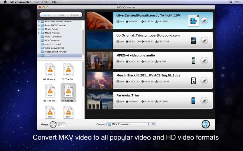 MKV Converter Screenshot