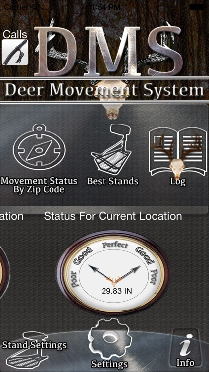 Deer Movement