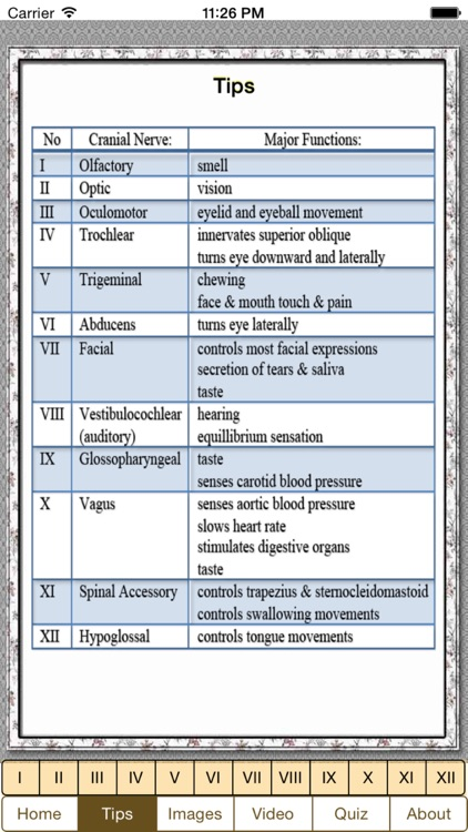 Cranial Nerves Plus screenshot-1