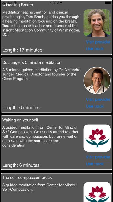 Zen Mindfulness screenshot three
