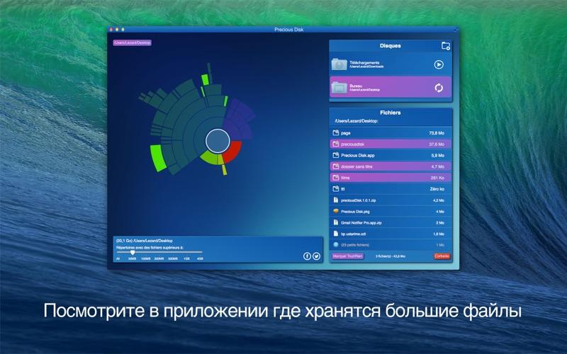 Precious Disk скриншот программы 2