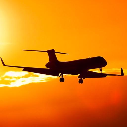 Airport Delays.
