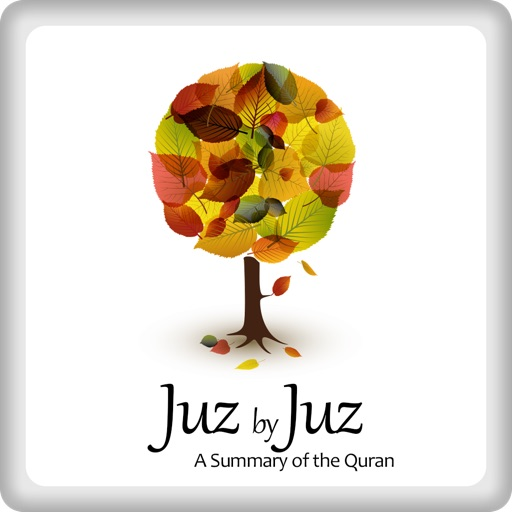 A Summary of the Quran: Juz by Juz by Muslim Research and