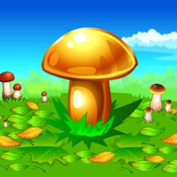 Codes for Mushroomers Hack